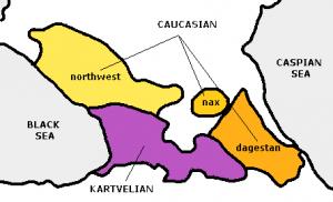 caucasian